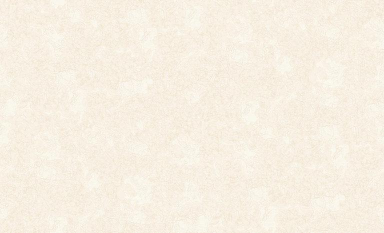60104-10 Mystery Erismann